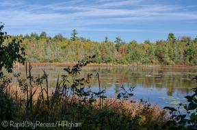 Pyatt Lake